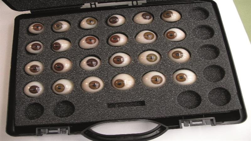 81a3f6274f1 Figure 1  A selection of prosthetic eyes