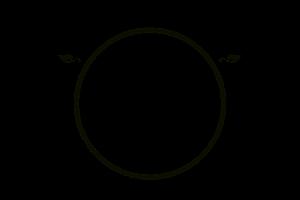 Rotunda Roundhouses  Logo