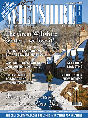 The Great Wiltshire winter - we love it!