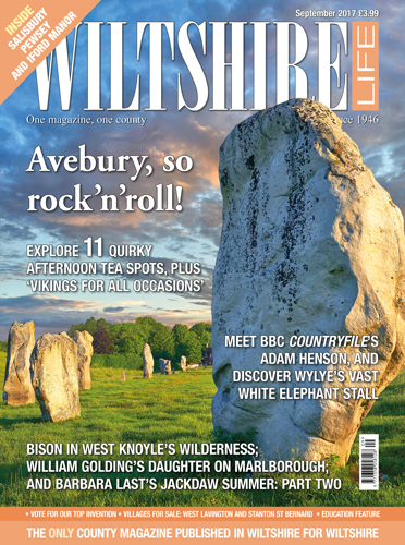 September 2017 - Avebury, so rock'n'roll!