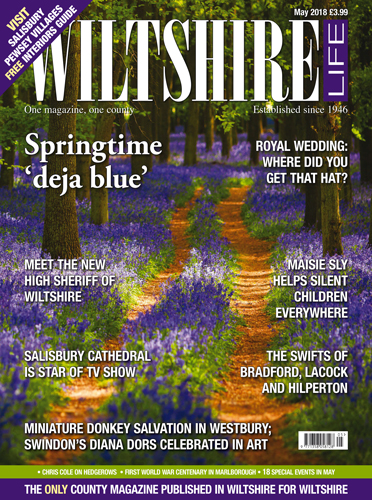 May 2018 - Springtime 'deja blue'