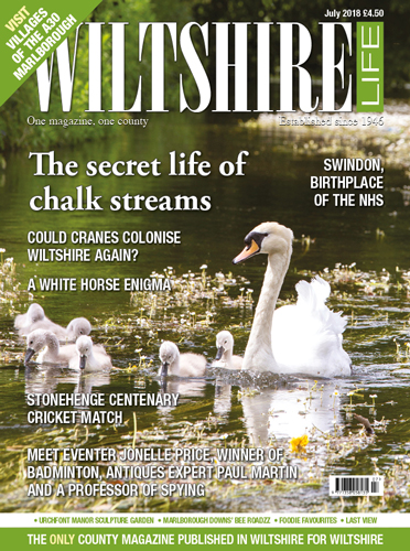 The secret life of chalk streams