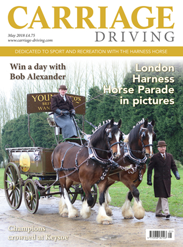 London Harness Horse Parade in pictures