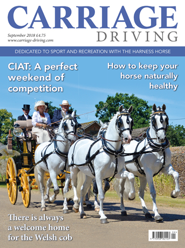 September 2018 Issue - CIAT: A perfect weekend of competition