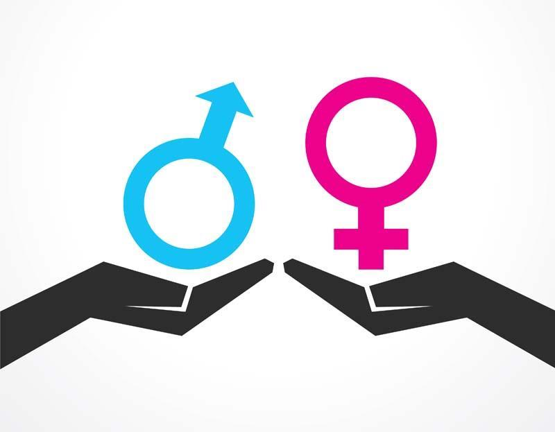 development of gender and sexual identity Part one: sexual orientation, from sexuality and gender: findings from the  or  identity — such as the influence of hormones on prenatal development — but.