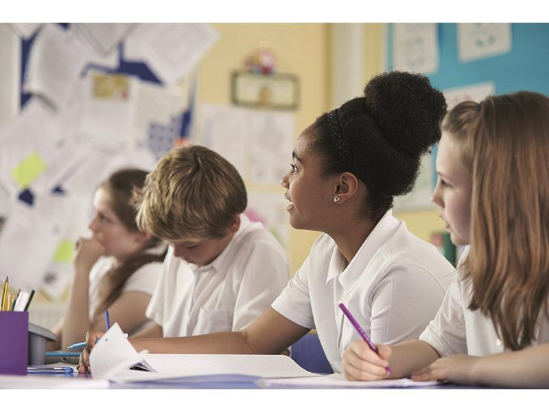 Metacognition in the primary school classroom