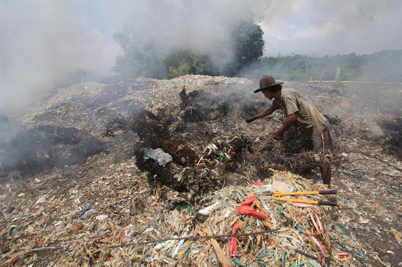 Toxic chemicals from plastic waste poison Indonesian eggs