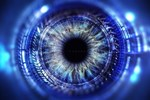 Image for article 213377