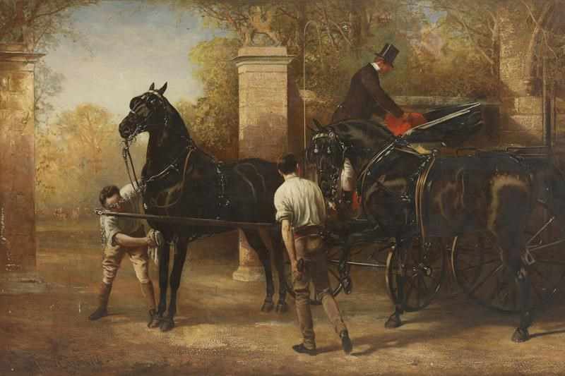 Major Stayplton's Phaeton Horses - putting to
