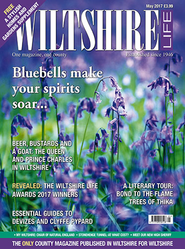 May 2017 - Bluebells make your spirits soar...