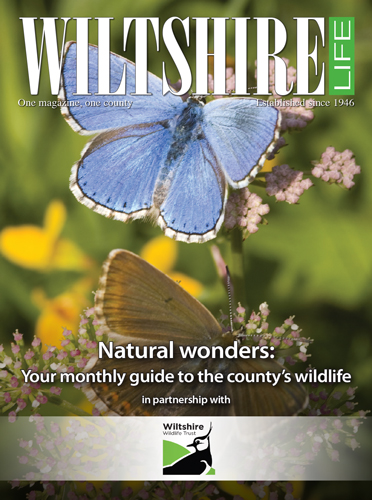 January 2019 - Natural wonders: Your monthly guide to the country's wildlife