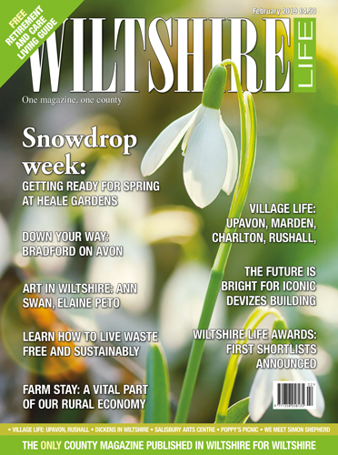 February 2019 - Snowdrop Week