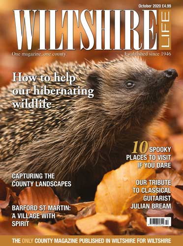 October 2020 - How to help our hibernating wildlife
