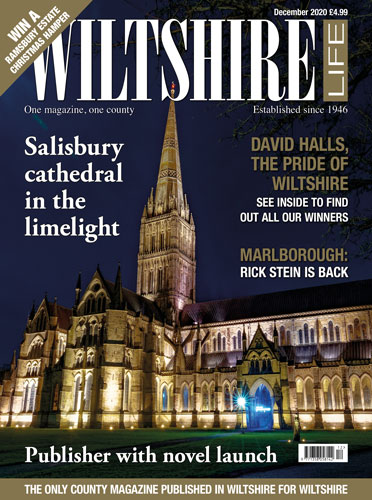Salisbury cathedral in the limelight