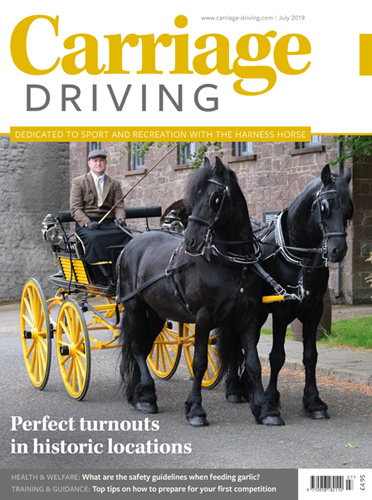 July 2019 Issue - Perfect turnouts in historic locations