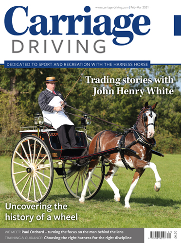 February-March 2021 Issue -